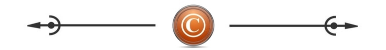 Copyright Spacer Orange ©Savvy Cleaner