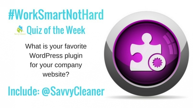 #WorkSmartNotHard, Best WordPress Plugin ©Savvy Cleaner