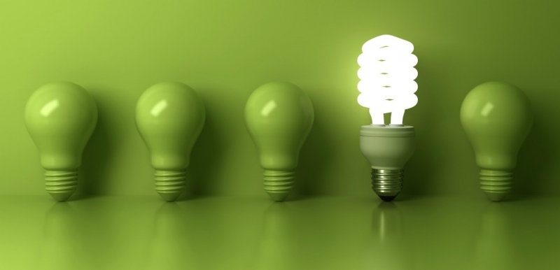 Stand Out with Guest Post green lightbulbs with one flourescent bulb