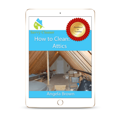 SCHT320 Attics, How to Clean, Savvy Cleaner