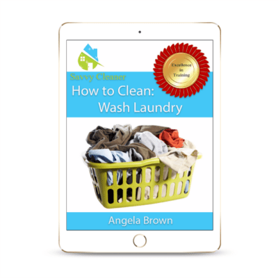 SCHT334 Wash Laundry, How to Clean, Savvy Cleaner