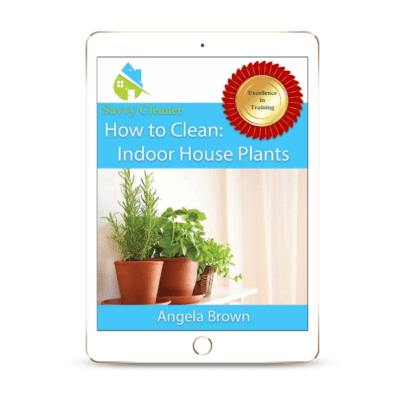 SCHT341 Indoor House Plants, How to Clean, Savvy Cleaner