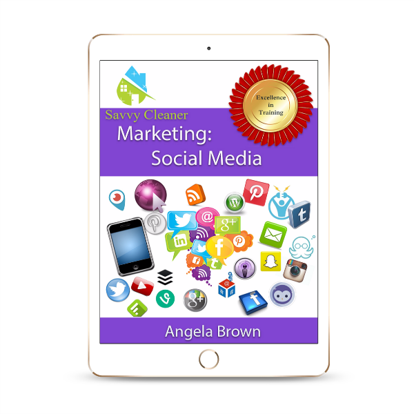 SCM209 Social Media Marketing, Savvy Cleaner