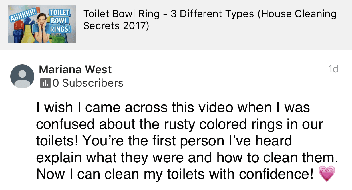 I was confused about toilet bowl rings, Ask a House Cleaner Testimonial