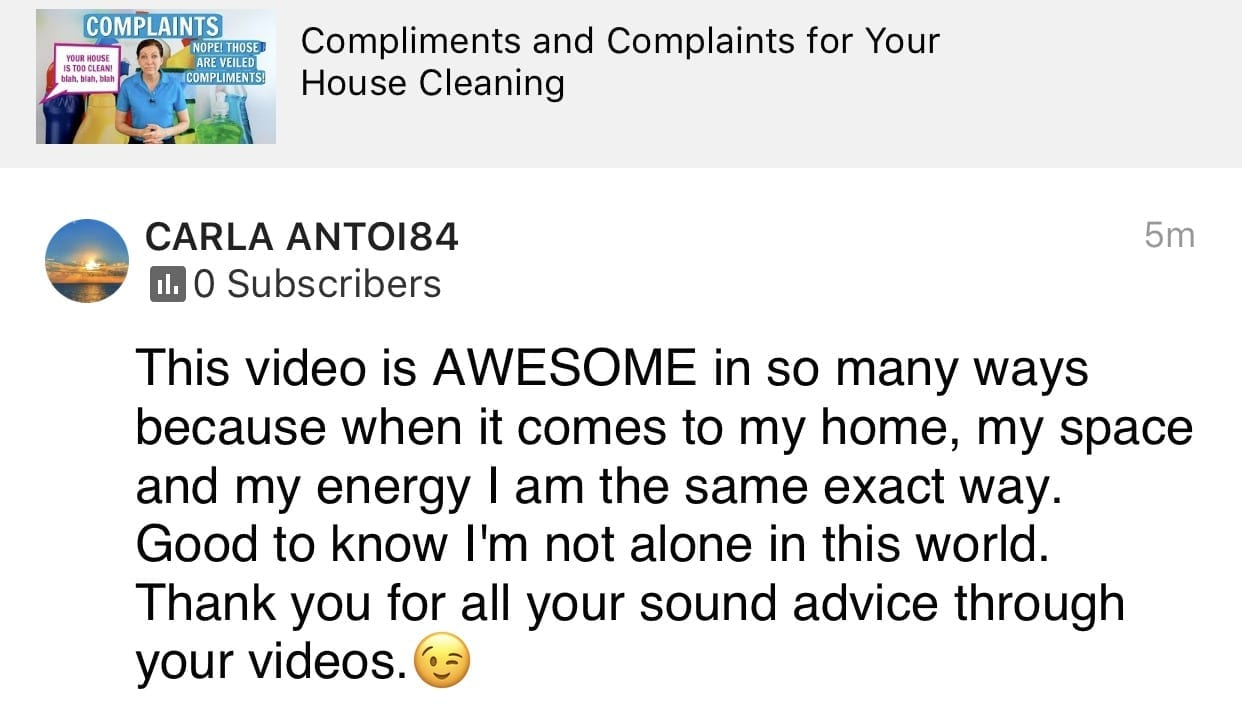 You crack me up, I totally admire your videos, Ask a House Cleaner Testimonial