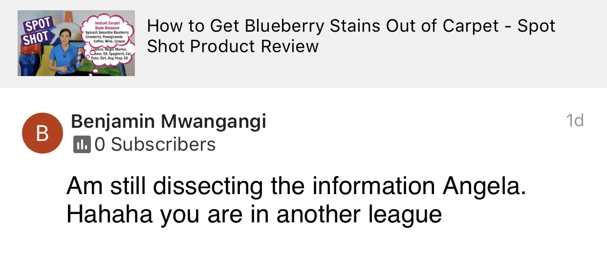 Another league, Savvy Cleaner Product Review Testimonial