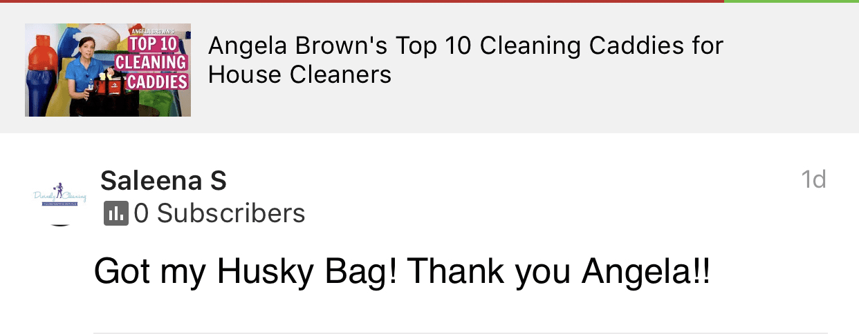 Got my Husky bag!, Savvy Cleaner Product Review Testimonial