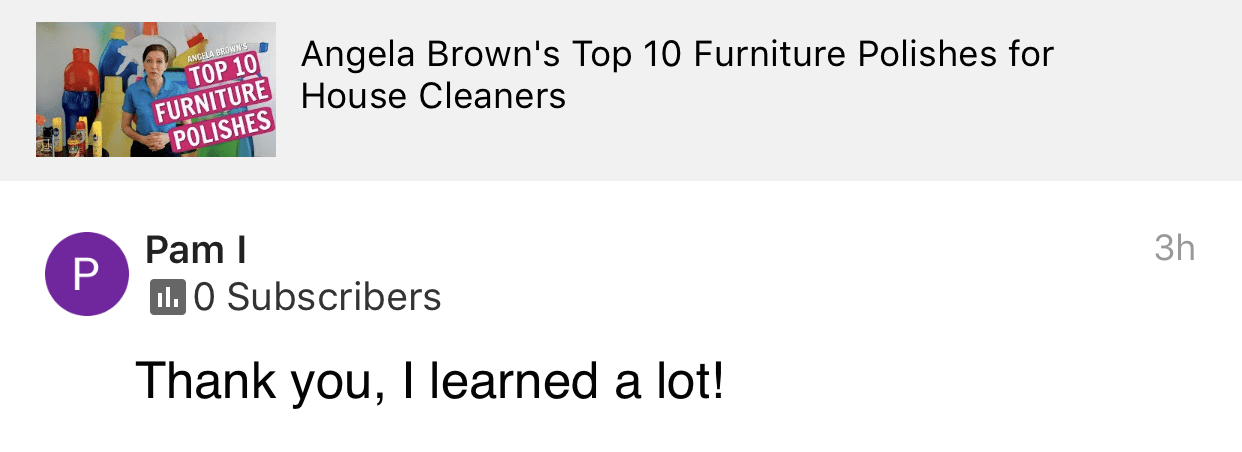 I learned a lot, Savvy Cleaner, Top 10 Furniture Polish Product Review Testimonial