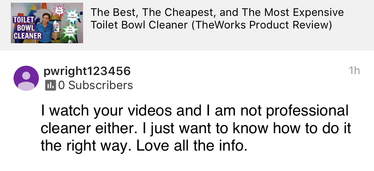 Not a professional house cleaner, Savvy Cleaner Product Review Testimonial