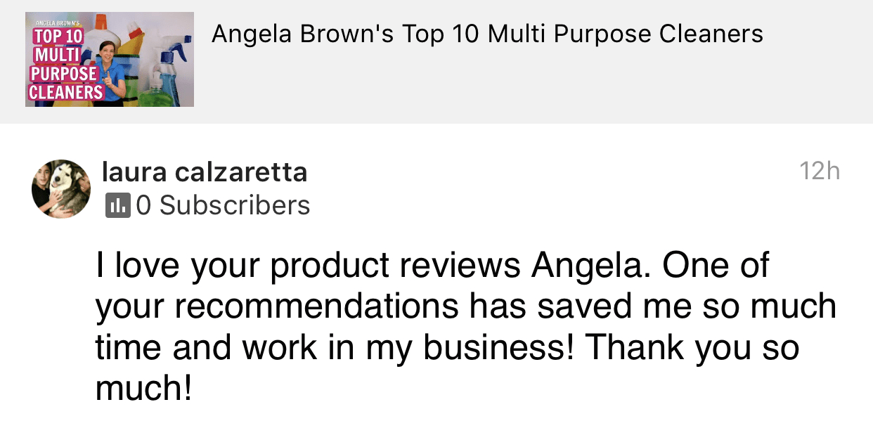 Saved me so much time, I need one, I need one, Savvy Cleaner Product Review Testimonial