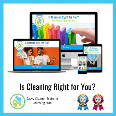 Is Cleaning Right For You, Savvy Cleaner Training Course