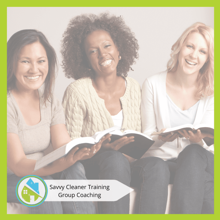 Savvy Cleaner Group Coaching 2Savvy Cleaner Group Coaching 2