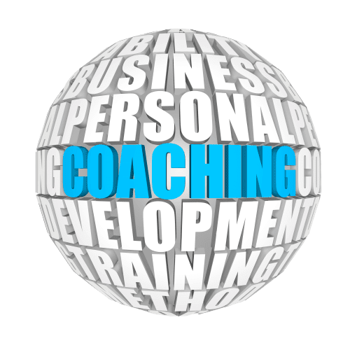 Group Coaching Savvy Cleaner Training