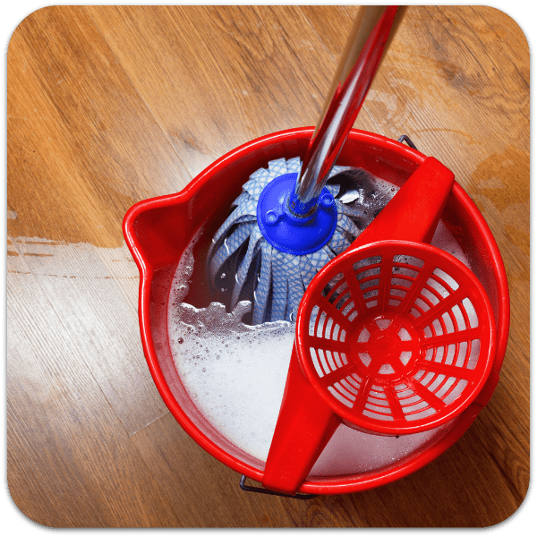 Mop with Mop Bucket and Sieve