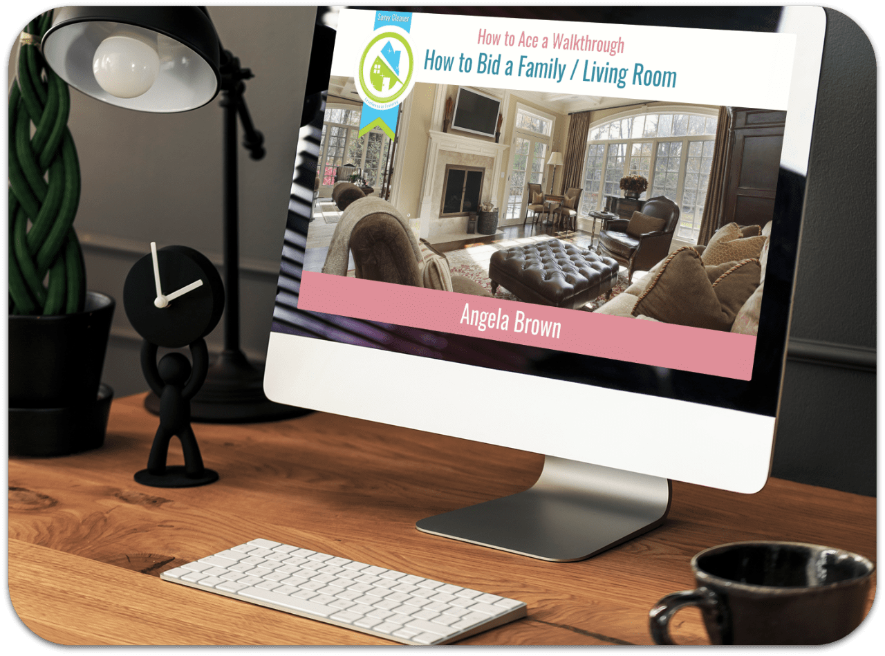Family Room Ace a Walkthrough Savvy Cleaner Training