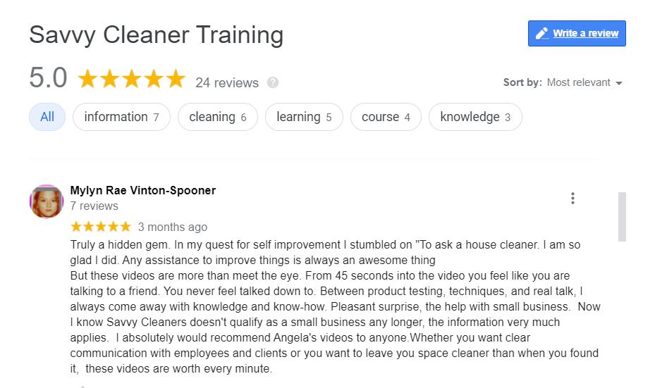Mylyn Rae Vinton-Spooner A Hidden Gem Savvy Cleaner Training Review
