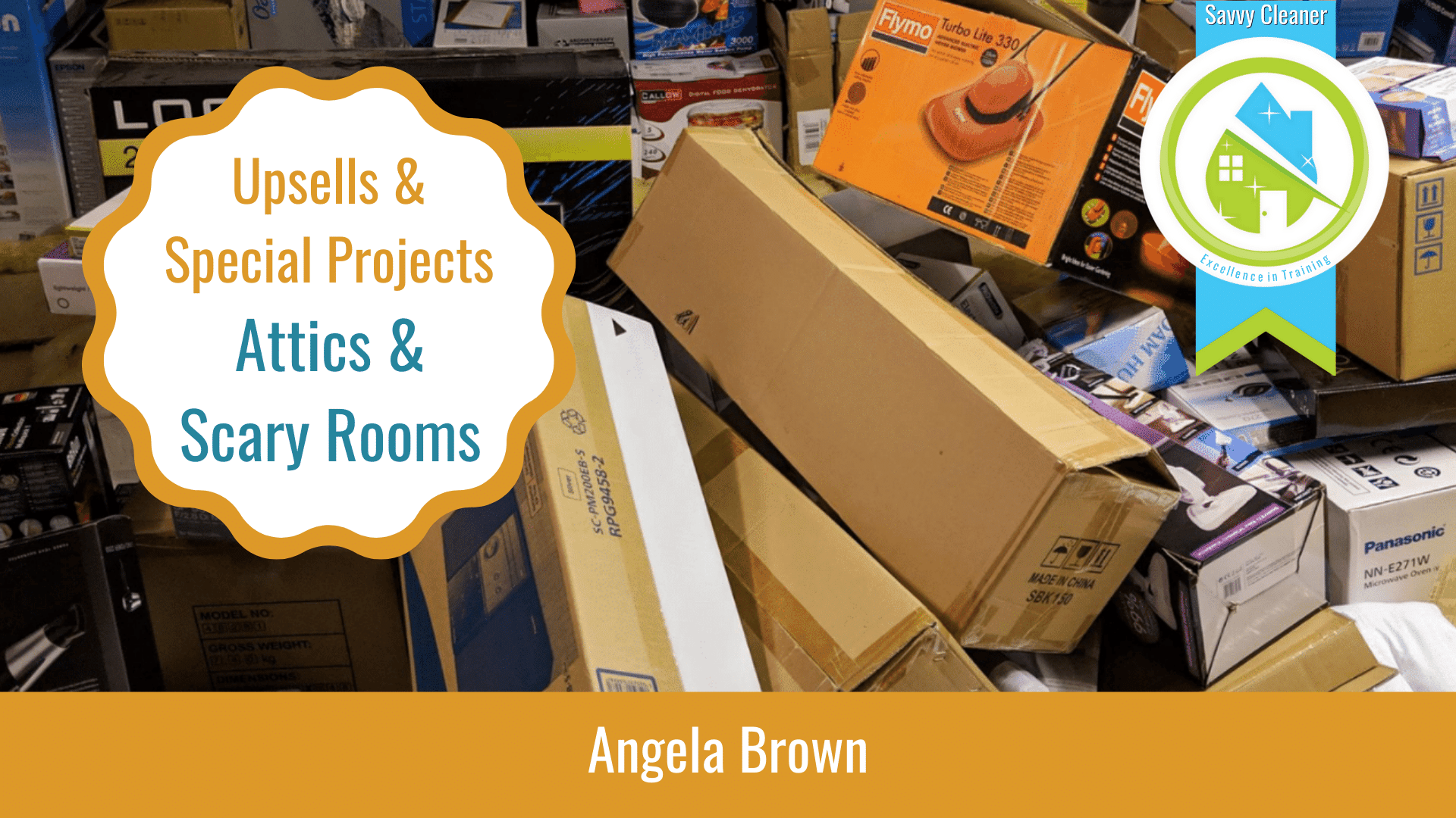 Upsells and Special Projects Attics & Scary Rooms