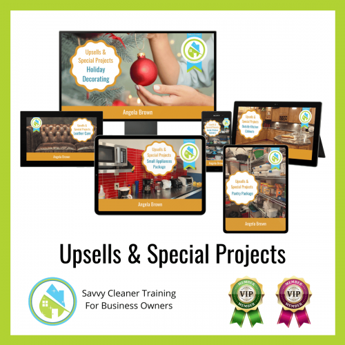 14 Upsells and Special Projects Savvy Cleaner Training