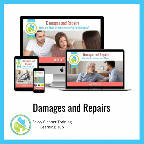 Damages and Repairs, Savvy Cleaner Training Course