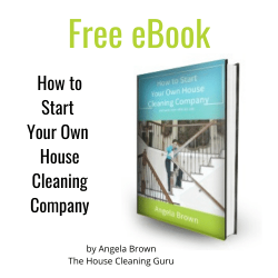Free Ebook How to Start Your Own House Cleaning Company