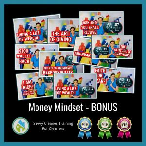 Money Mindset Savvy Cleaner Training