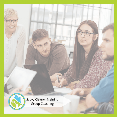 Savvy Cleaner Group Coaching 1