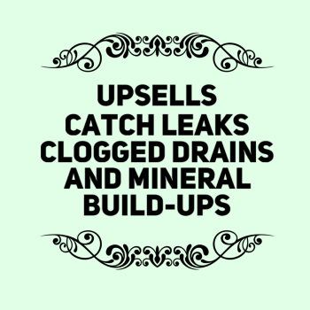 Upsells and Special Packages Reasons Catch Leaks