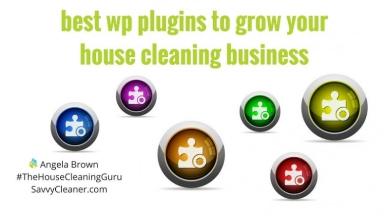 WordPress Plugins to Grow Your House Cleaning Business